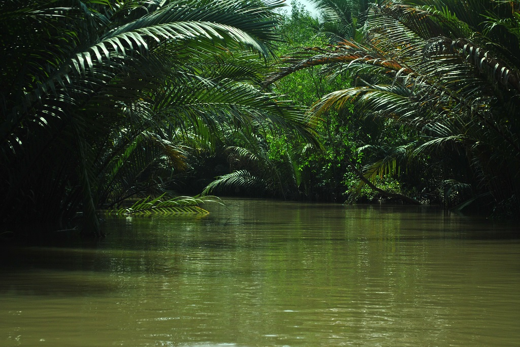La fitta vegetazione che contraddistingue il Delta del Mekong