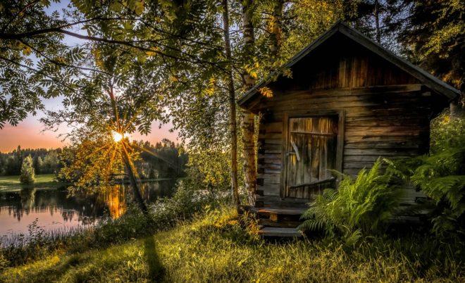 Sauna nella foresta
