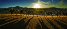 Sulle tracce di Gengis Khan nella Mongolia Interna