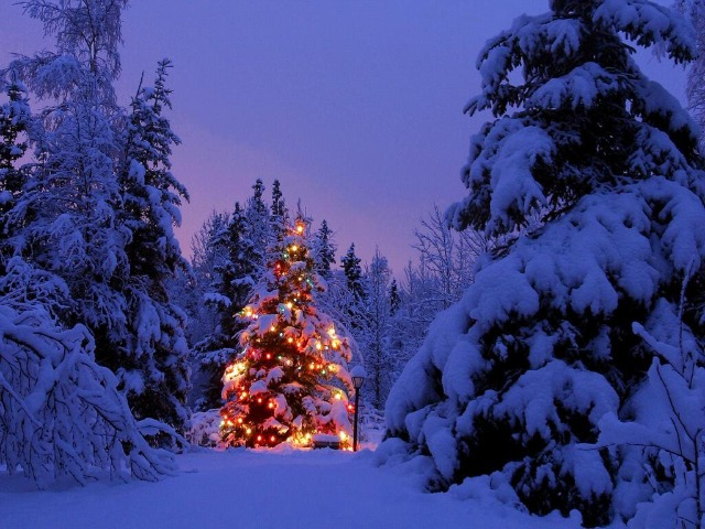 Mercatini di Natale in Sassonia: la Germania dei minatori
