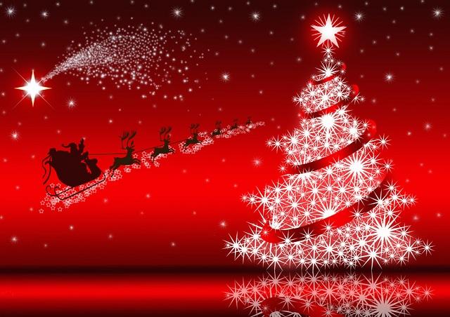 Del Natale.I Perche Del Natale Sapete Proprio Tutto
