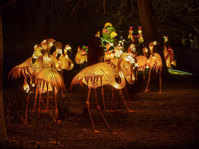 magical lantern london Sciosia