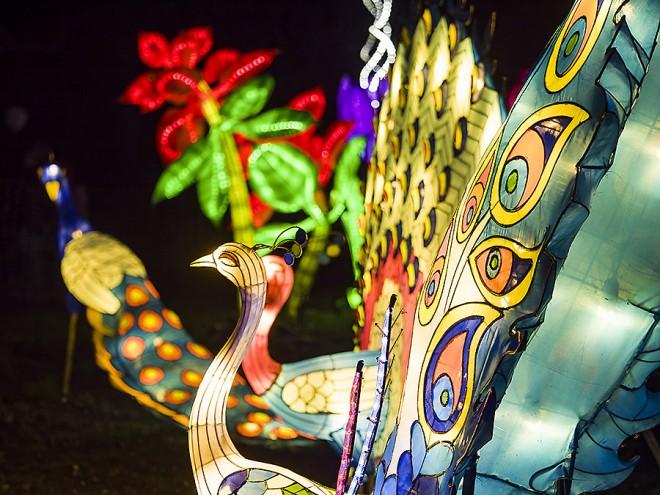festival lanterne sciosia