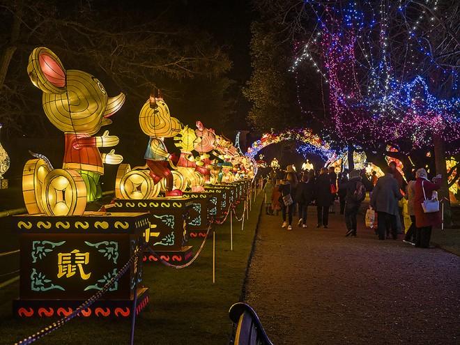 magical lanterns london Sciosia