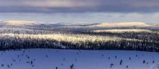 Lapponia finlandese. I colori del freddo