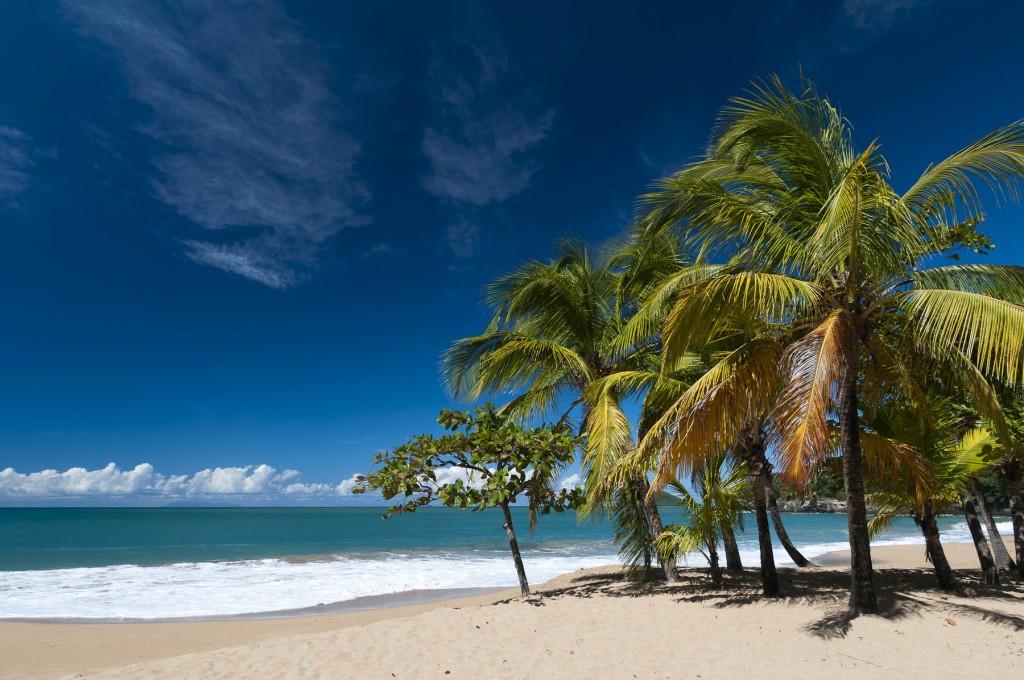 la-perle-deshaies-basse-terre-guadalupa-caraibi-francesi