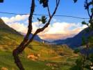 Santa Maddalena, cuore enogastronomico dell'Alto Adige