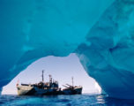 Sea Shepherd, un libro celebra i pirati che difendono l'oceano