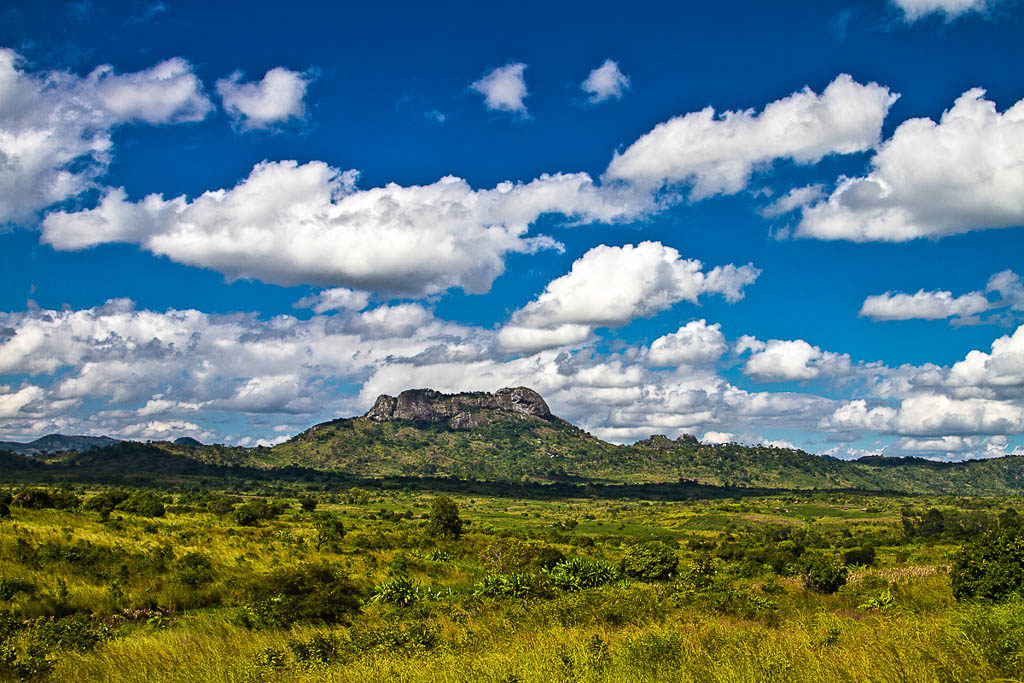 mozambico-parco-gorongosa