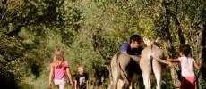 Nella vecchia fattoria la vacanza è formato famiglia