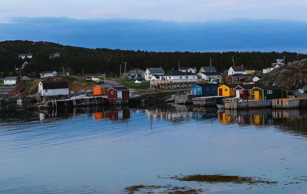 Twillingate Island-Back Harbour