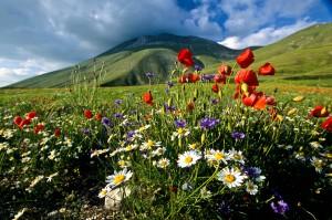 Monti sibillini primavera tra enea e l 39 antro della sibilla for Foto paesaggi naturali gratis