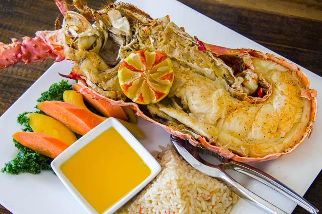 Anegada Lobster_credits JordanaWright (2)