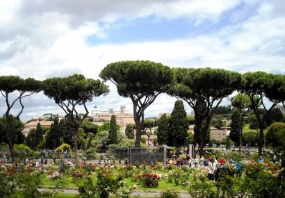 Roma: primavera all'Aventino e al Roseto Comunale