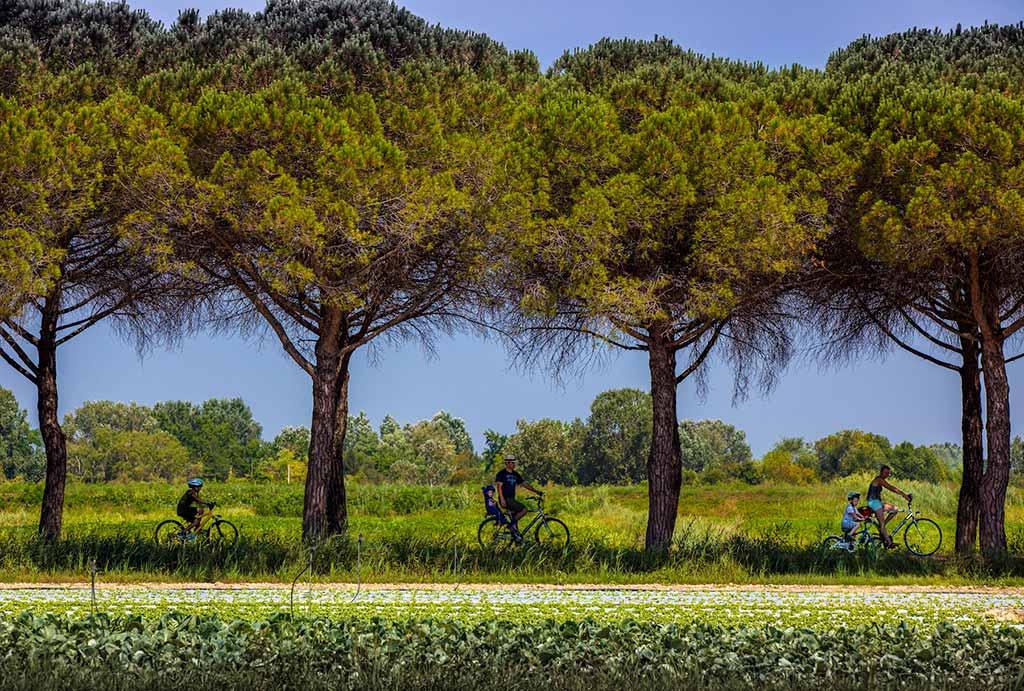 Bibione-bicicletta-pineta-vacanza-slow