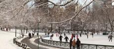 Frog Pond: l'inverno si specchia a Boston