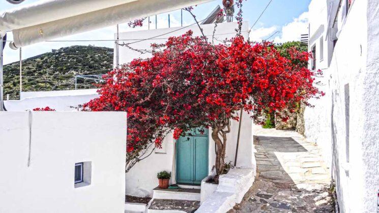 sifnos-isole-grecia