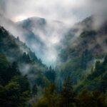 romania-monti-carpazi-nebbia