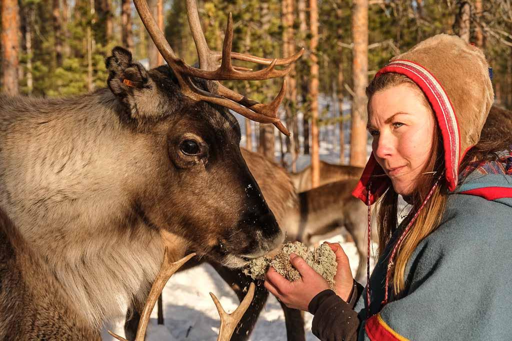 Lapponia-svedese-popolazione-sami