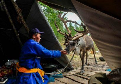 Mongolia: Tsaatan – gli uomini renna