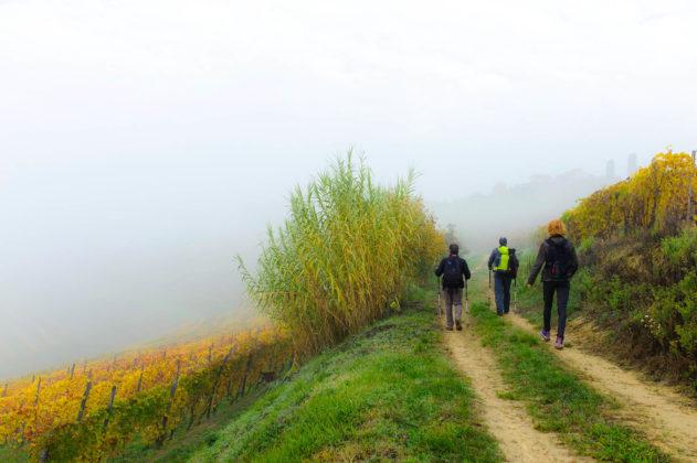 Castelnuovo Don Bosco- All'inizio del sentiero che porta all'abazzia di Vezzolano, astigiano, Italia