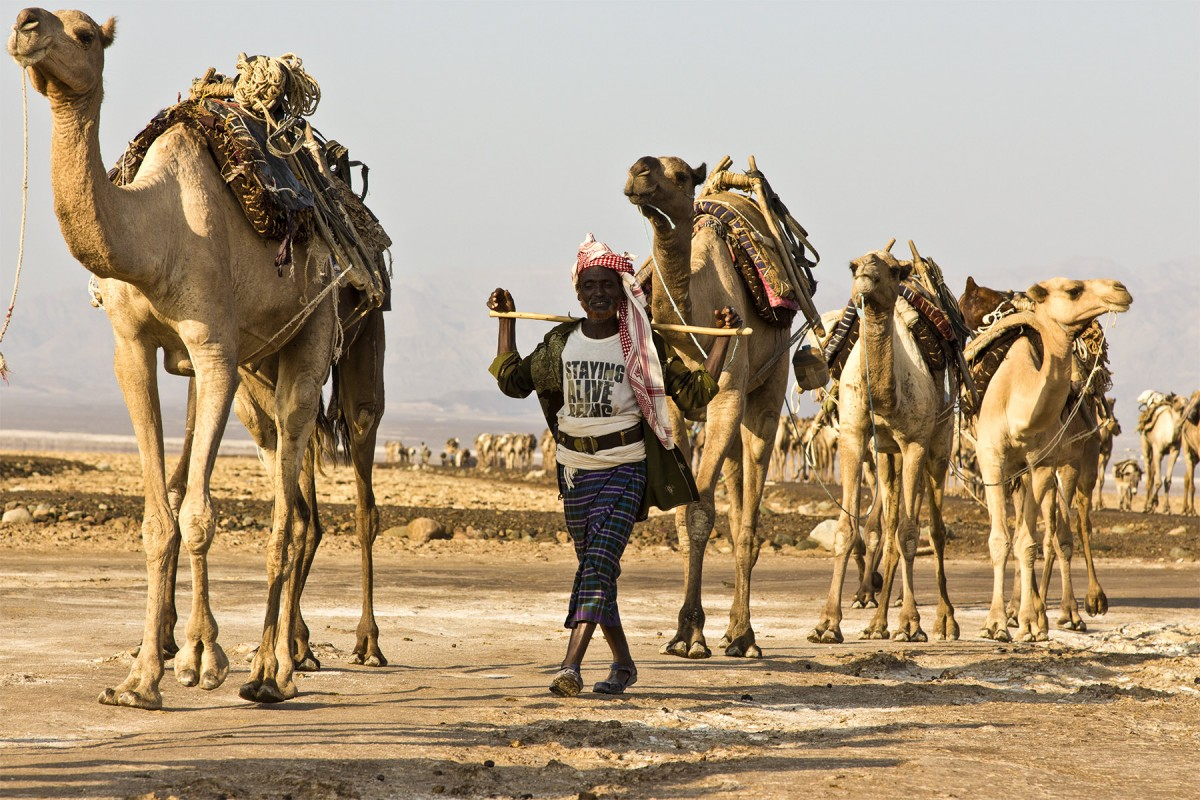 Dancalia. L'inferno d'Etiopia