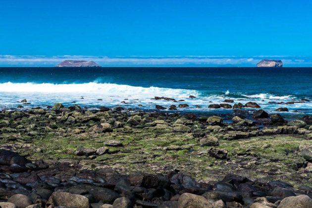 North Seymour island, Galapagos, Ecuador
