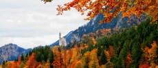 Foliage d'autunno. I luoghi dove ammirarlo