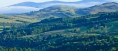 La Scozia selvaggia, il Parco dei Cairngorms