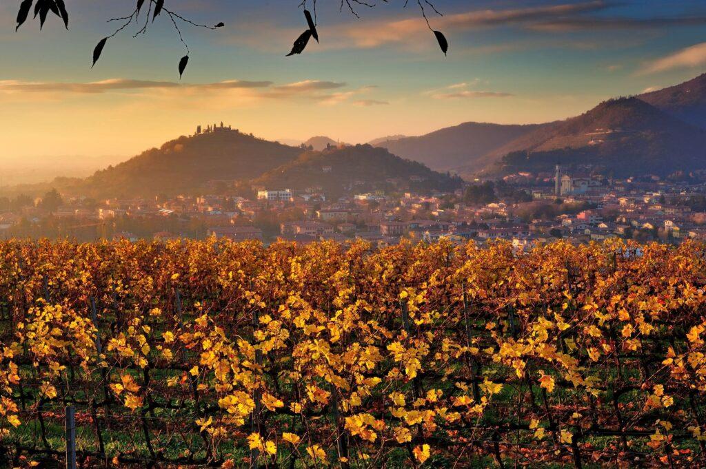 rassegna lo spiedo scoppiettando gussago franciacorta  autunno gussaghese foliage