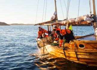 Pesca dell'astice, Svezia.