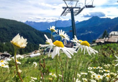 Val d'Aosta. Sotto il cielo di Chamois