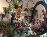 Milano: il nuovo quartiere degli artisti si chiama Nolo