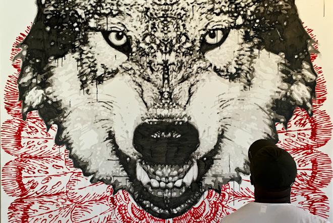 Il lupo nella Sila