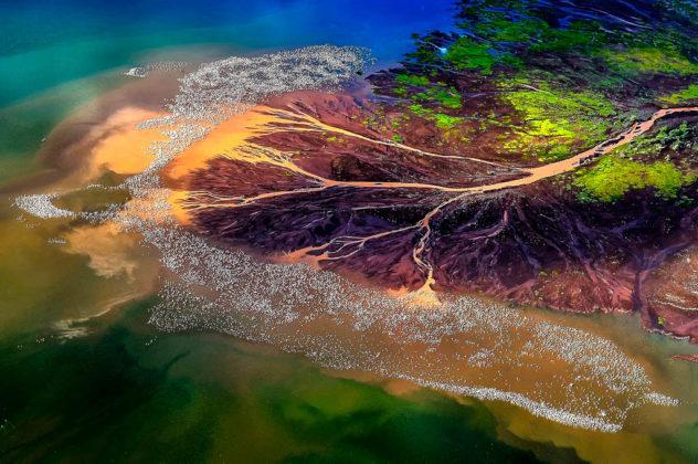 kenya-lago-nakuru