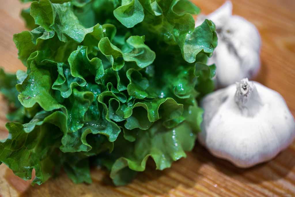 polesine-insalata-lusia-aglio-bianco