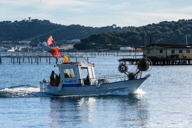 francia Dipartimento del Var La Seyne-sur-Mer