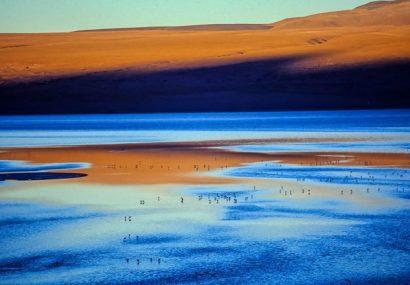 Bolivia. Esperienze e Conoscenze