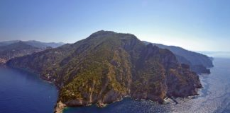 Liguria_Parco di Portofino 1