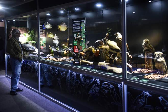 Museo Itaipu Tierra Guarani