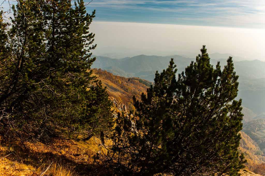 Oasi Zegna, Piemonte