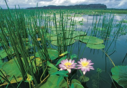 Avventura e romanticismo nel Northern Territory