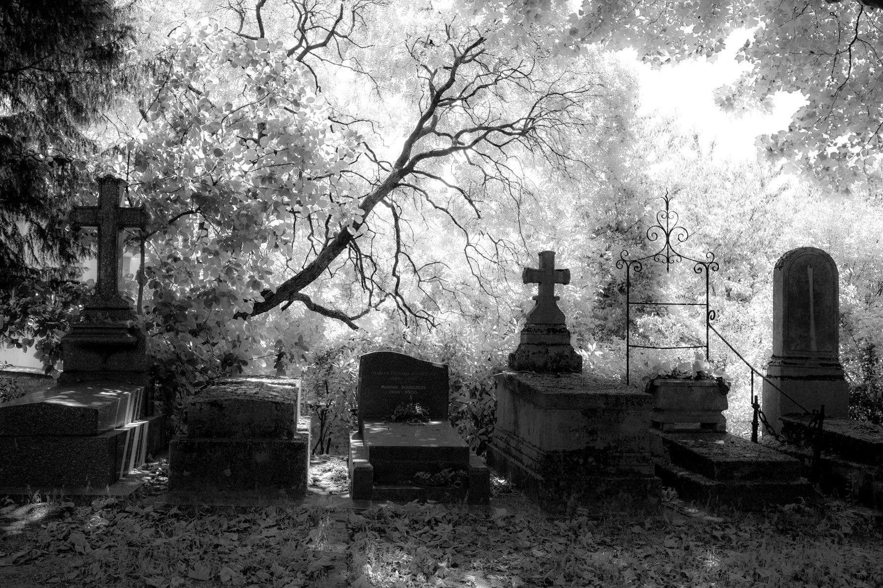 Cimitero Pere Lachaise Parigi