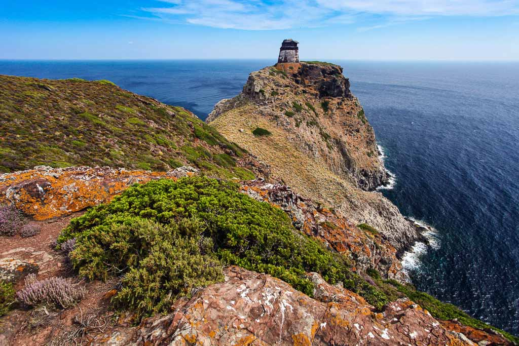 la Torre dello Zenobito sull'Isola di Capraia