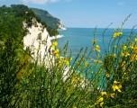 Riviera del Conero. Fra storia e angoli di natura selvaggia