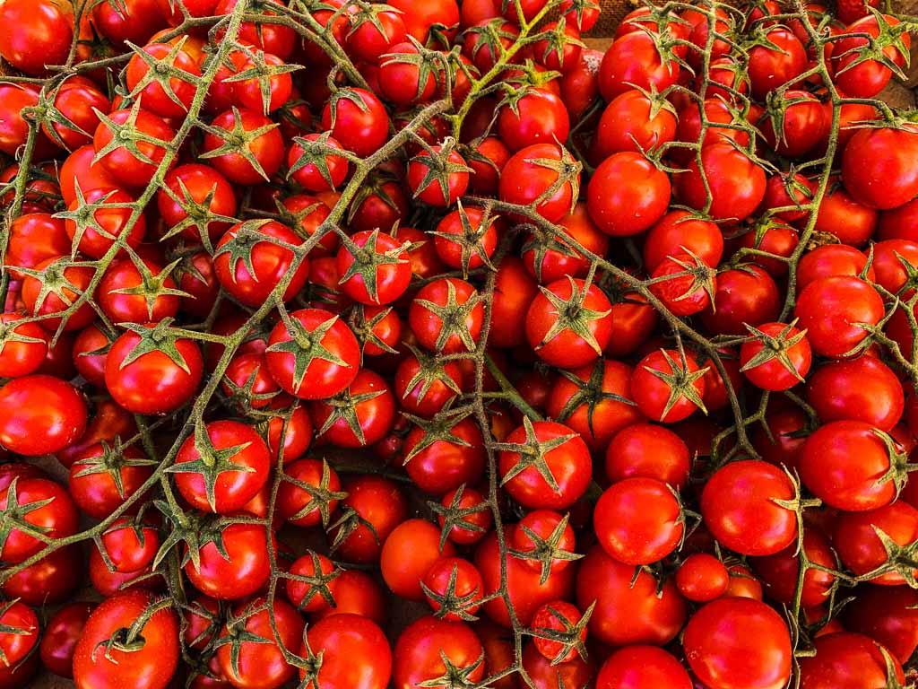 Sicilia_pachino-pomodori