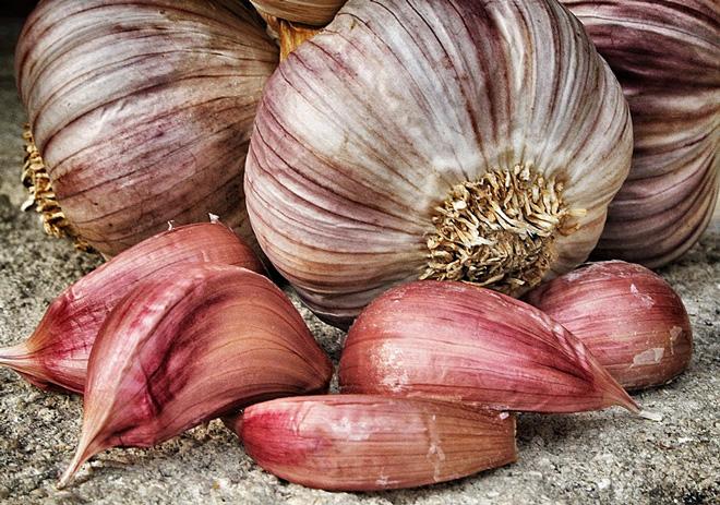 slow-food-sicilia