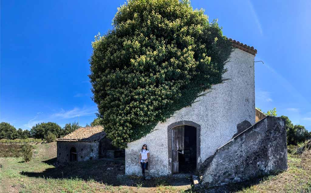 sicilia-etna