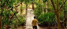 Ecoturismo: il Vietnam sostenibile