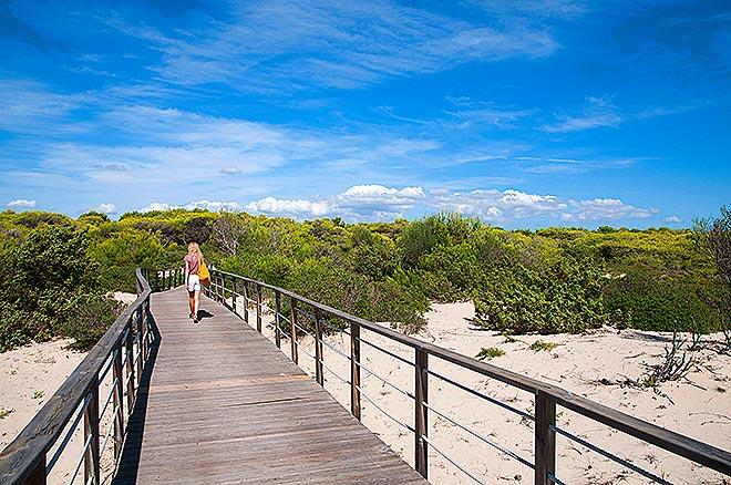 Il sentiero che conduce alla spiaggia © Mimmo Torrese